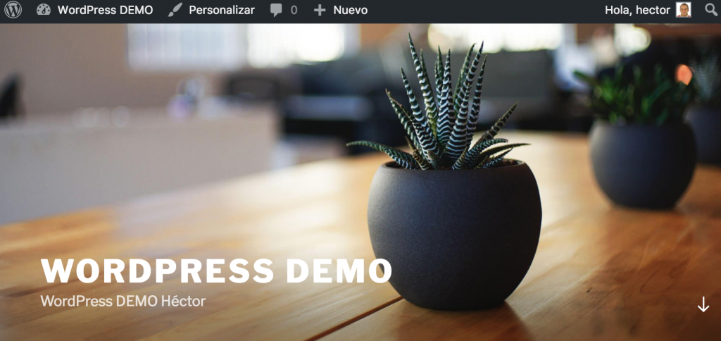 Probando la API REST en WordPress demo foto