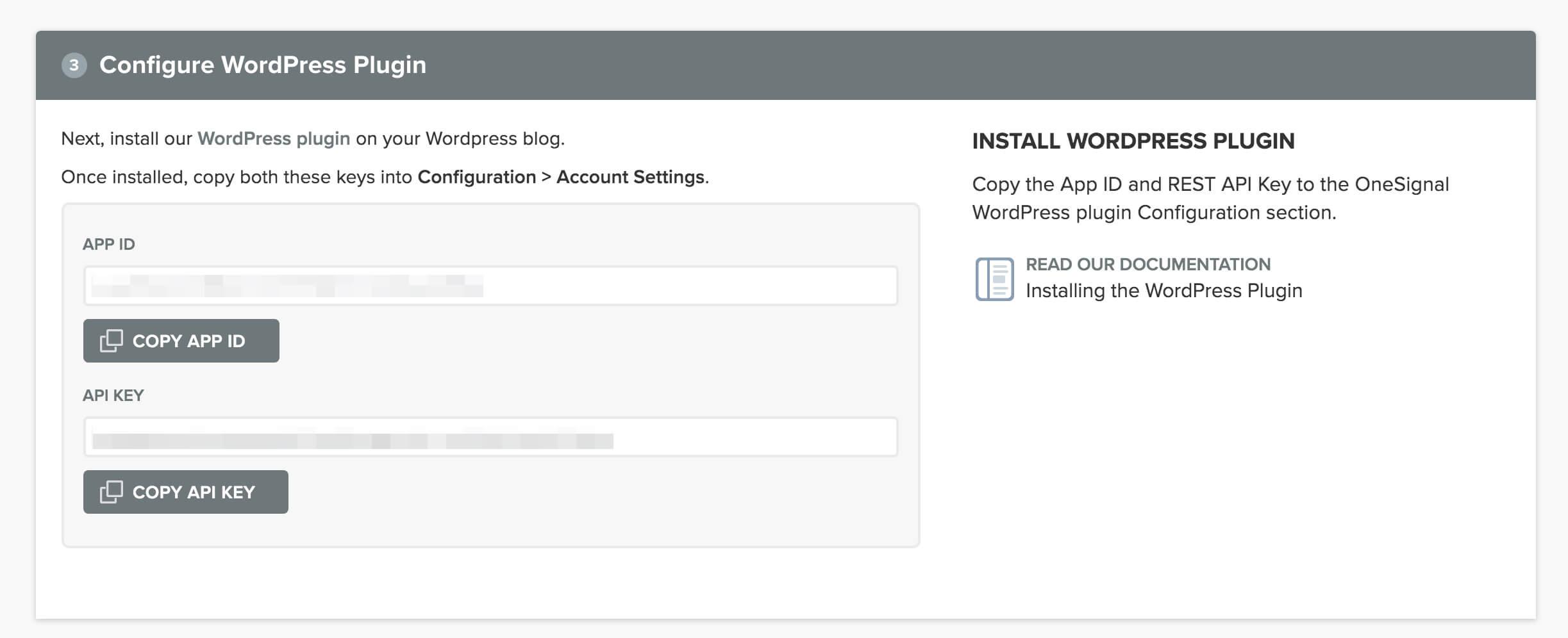 imagen de ventana con app id y api key para configurar las notificaciones push